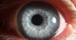 La retina ocular puede mostrar enfermedades cerebrales